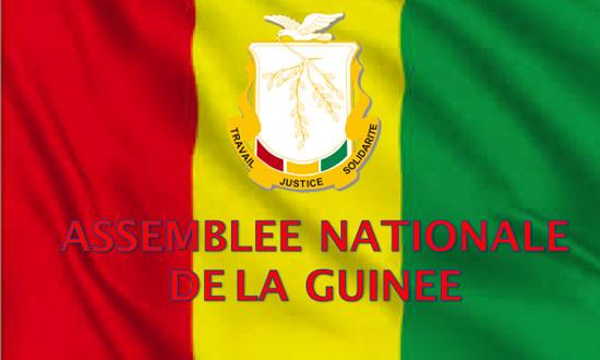 Guinée: Adoption par l'Assemblée Nationale des conventions sur la production énergétique et de l'interconnexion avec les pays de l'OMVG